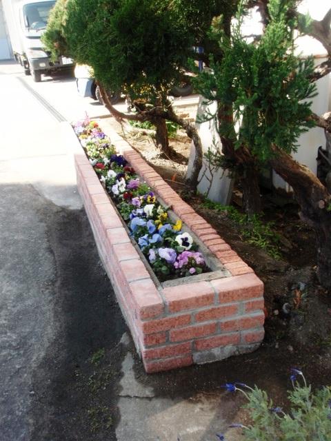 笑顔の花を咲かせよう!!