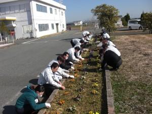 【熊本事業所】花植え2